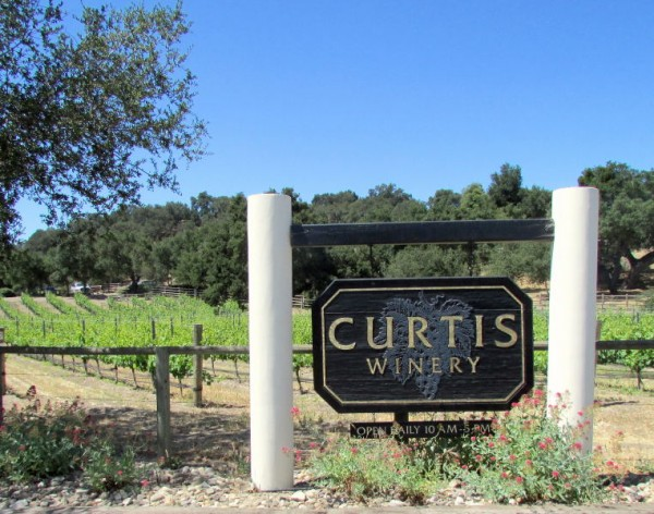 Curtis Vineyards